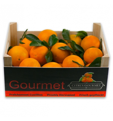 Caja de Naranjas Valencianas de Mesa Premium 8 Kg