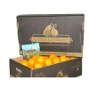 Apfelsinen aus Valencia von CitrusGourmet Tafelqualität 30 kg