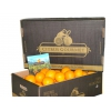 Apfelsinen aus Valencia Tafelapfelsinen Premium 30 kg
