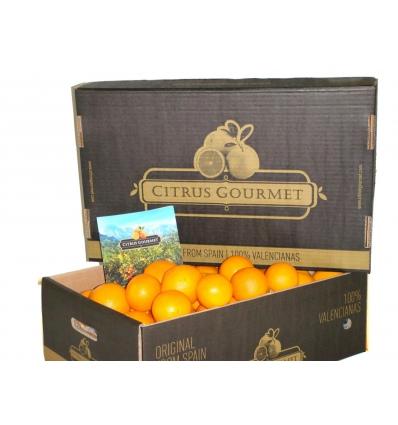 Saftapfelsinen aus Valencia von CitrusGourmet 30 kg
