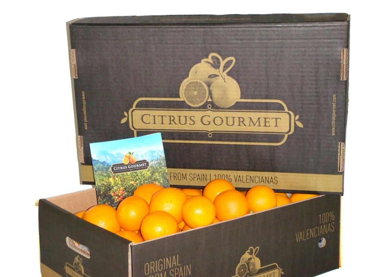 Apfelsinen aus Valencia von CitrusGourmet. Tafelqualität 10 kg