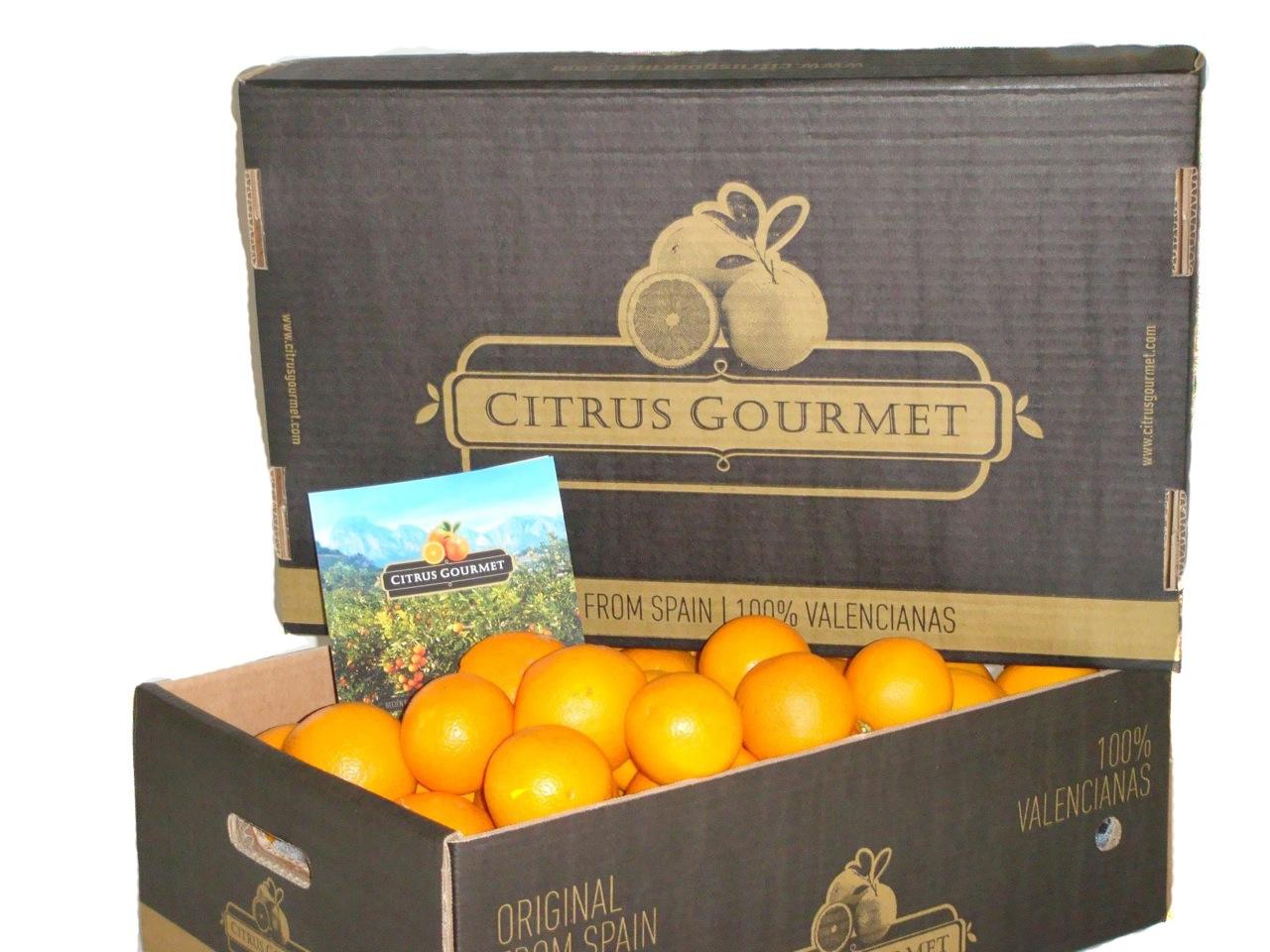 Apfelsinen aus Valencia von CitrusGourmet. Tafelqualität 15 kg
