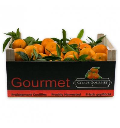 Caja de Mandarinas Valencianas de Mesa 8 Kgs