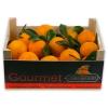 Caja de Naranjas Valencianas de Mesa 8 Kgs