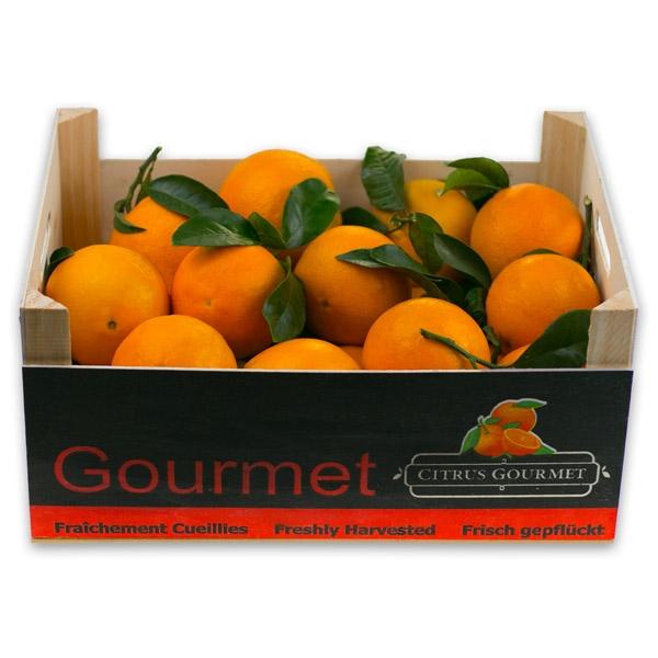 Caja de Naranjas Valencianas de Mesa Premium 12 Kgs