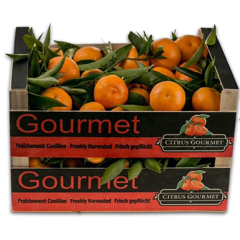 Caja de Mandarinas Valencianas de Mesa 12 Kg