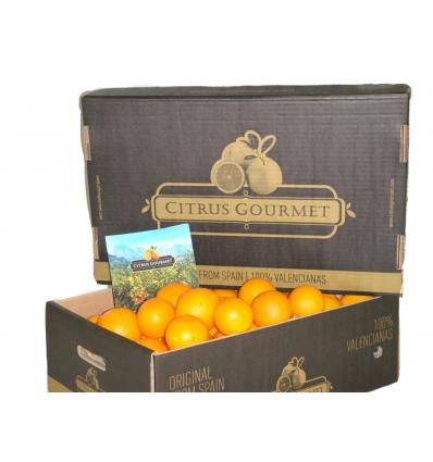 Oranges de Valence Citrus Gourmet Table 15 kilos